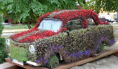 Blumen - Trabant