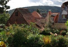 Blumen und Dächer
