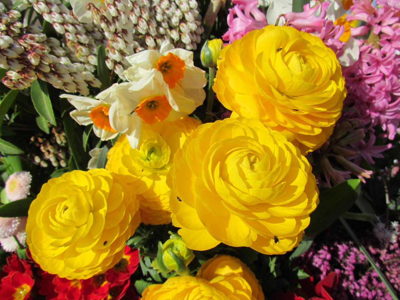 Blumen von einer Friedhofsschale