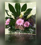 Blumen zum Mittwoch