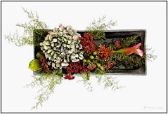 Blumenarrangement 012