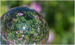 Blumenbeet in der Kugel