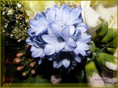 * BlumenDuft, der vorauseilt... *