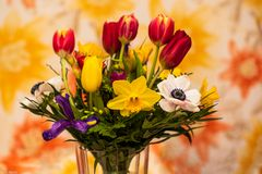 Blumengruß  (5)