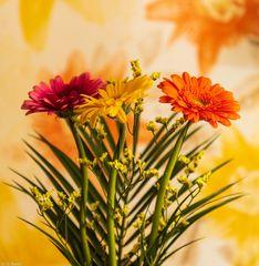 Blumengruß  (7)