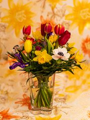 Blumengruß  (8)