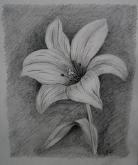 Blumengruß.......