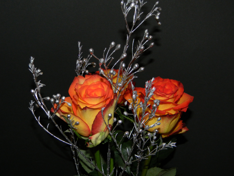 Blumengruss zum Jahreende