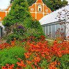 Blumenmeer (2)