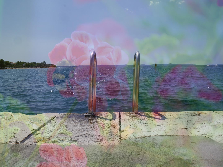 Blumen(Meer) was will man mehr?