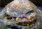 Blumennymphe