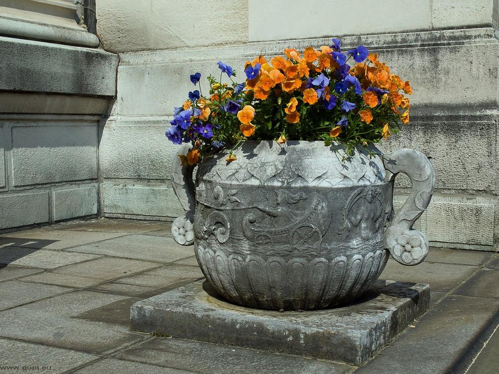 Blumenpott im Hügelpark Essen - II
