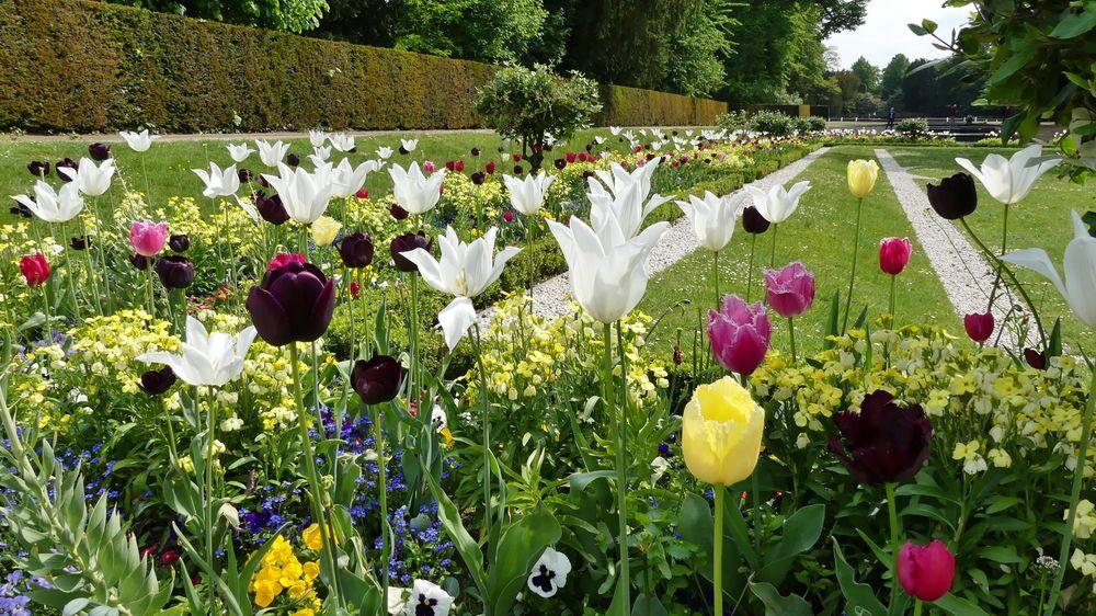 Blumenpracht im Düsseldorfer Schlosspark Benrath