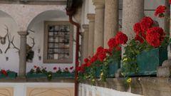 Blumenschmuck in der Burg Clam