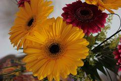 Blumenstraus für meine Süße