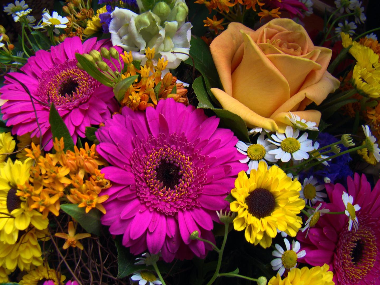 Blumenstrauss Bild