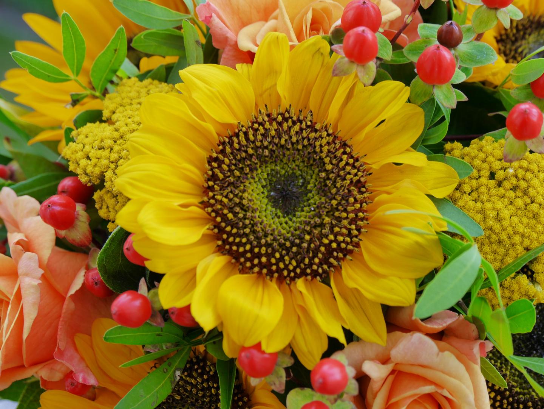 Blumenstrauß Foto & Bild   blumen, sonnenblume, 20.07.2017