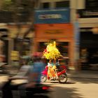 Blumentranport in Saigon