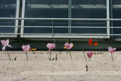 Blumentreppe