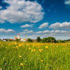 Blumenwiese am Dorfrand