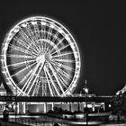 BMTH.wheel