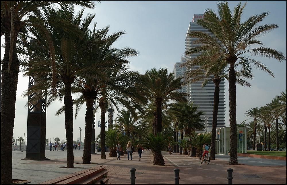 ... Boardwalk ...