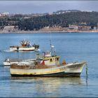 Boats on river Tejo