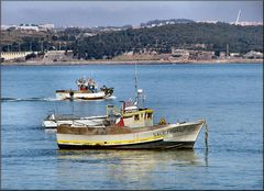 Boats on river Tejo