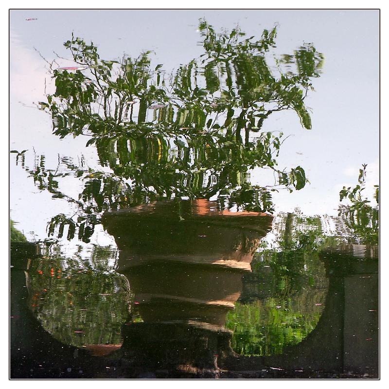 Boboli-Spiegelei