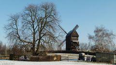Bockwindmühle bei gefühlten -14 Grad Celsius