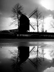 Bockwindmühle im Gegenlicht