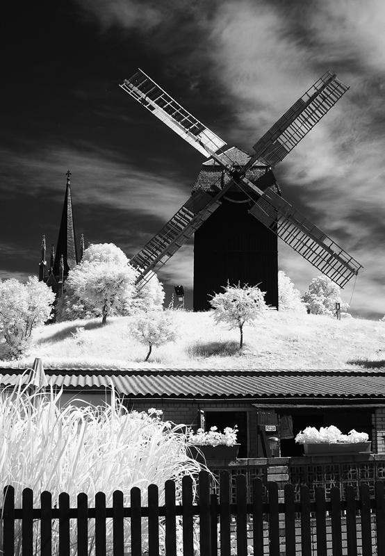 Bockwindmühle in Werder [RELOAD]