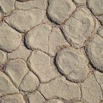 Boden eines Vlei - natürliche Strukturen (4)