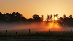 Boden-Nebel....