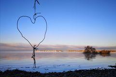 Bodensee am frühen Morgen