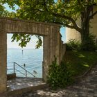 Bodensee-Idyll 1