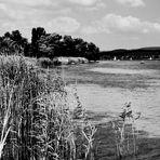 Bodensee Impressionen 5
