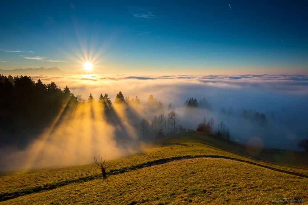 Bodensee Nebelverdeckt...