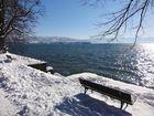 Bodensee - Winterstimmung