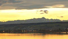 Bodensee/Gnadensee bei Allensbach mit Sicht auf die Alpen