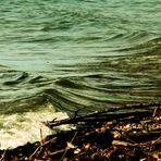 Bodenseeimpressionen 6