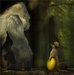 Bodo hat beim Pilzesammeln im Wald ...
