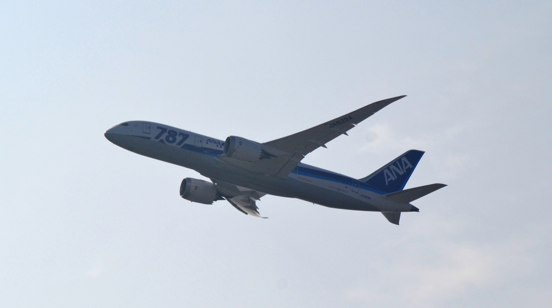 Boeing 787 ANA