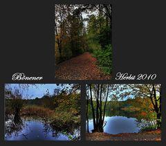 Bönener Herbst 2010