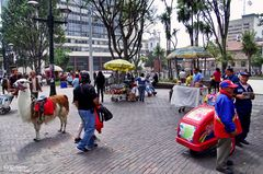 Bogotá D. C. - Street