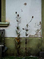 Bohrstr. 13, Wismar