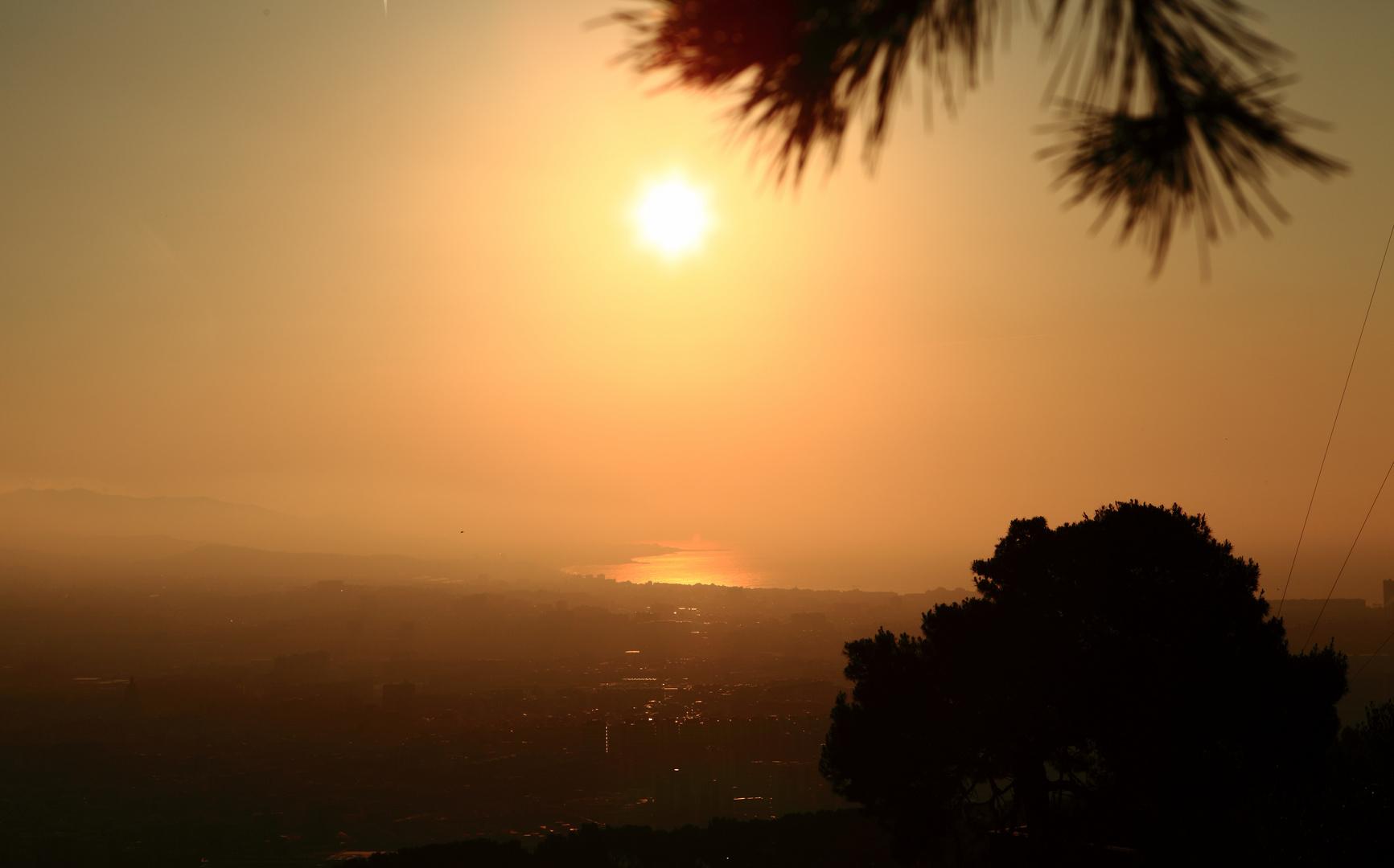 Boirina a la sortida del sol