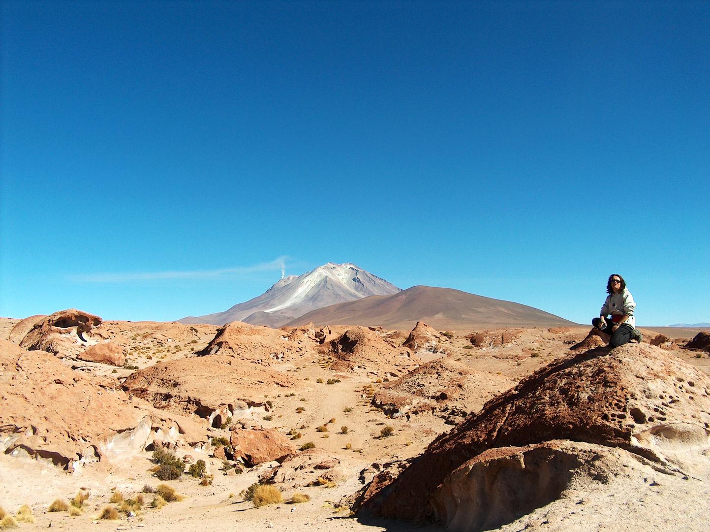 Bolivia Deserti Montani