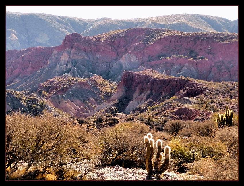 Bolivianische Erosionslandschaft