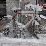 Bologna in bici !!